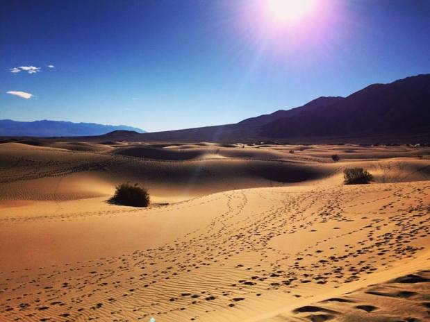 DunesDVNP
