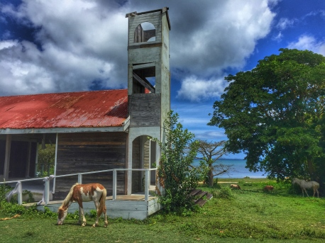 Horses Church - PR